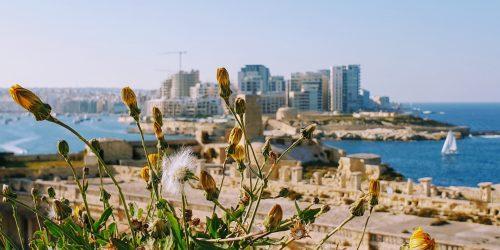 Malta Vs Gozo Fort St Elmo banner